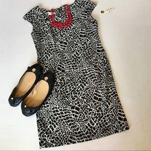 NWT Petite Sz 8 Animal Print Dress